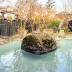 いろり湯の宿 大阪屋